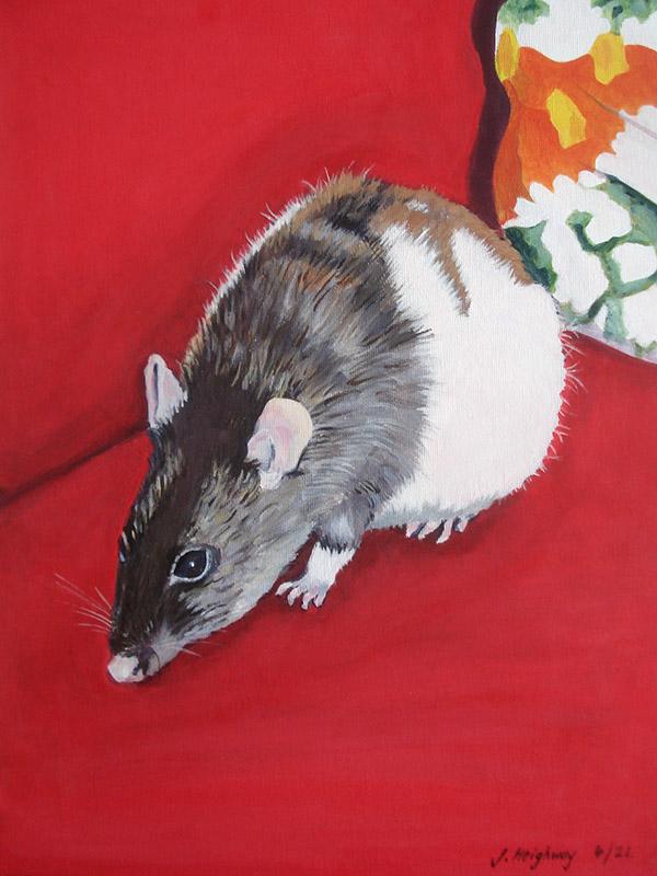 Geoffrey the rat